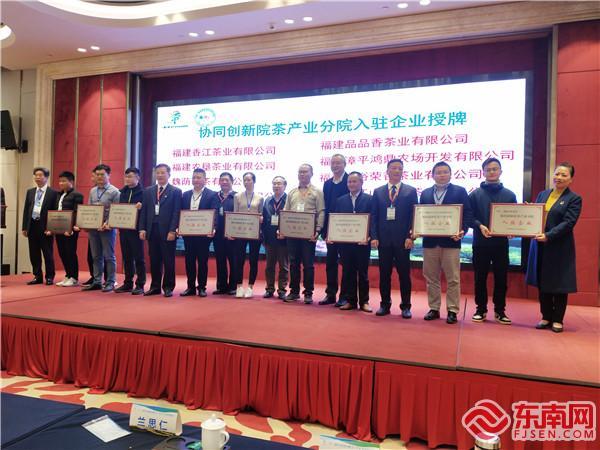 协同创新院茶产业分院入驻企业授牌 东南网记者张立庆摄.jpg